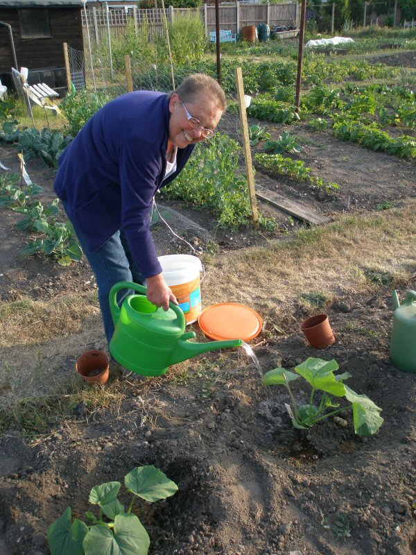 super squash planting method