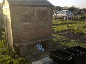 go car free on the allotment