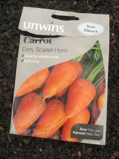 trying stumpy carrot varieties