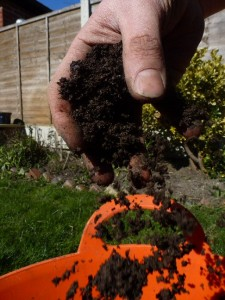 cutting down on multipurpose compost