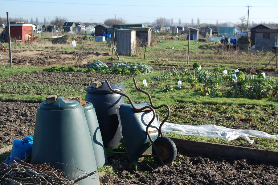 reasons to take on an allotment