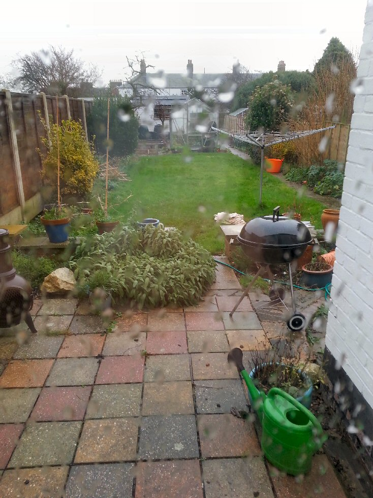 allotment jobs to do when the weather is rubbish