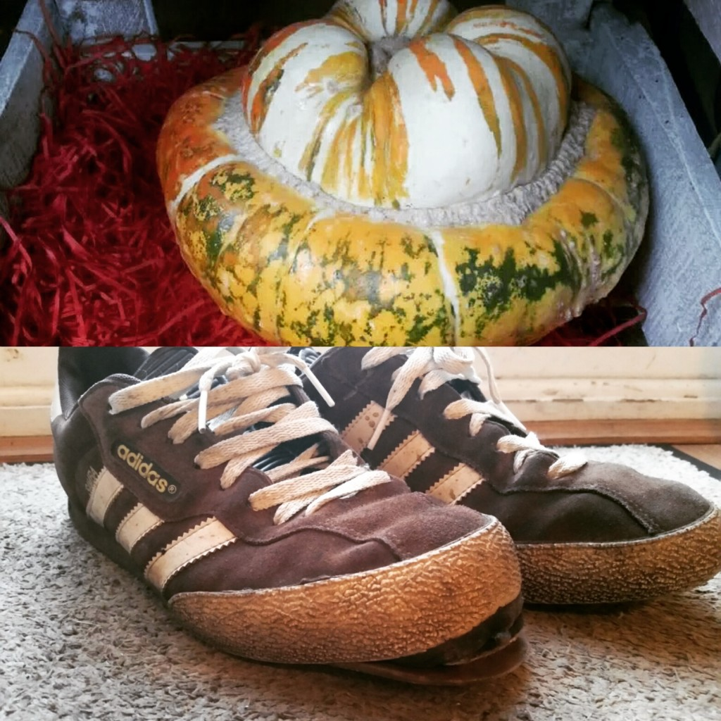 squashes are better than adidas sambas