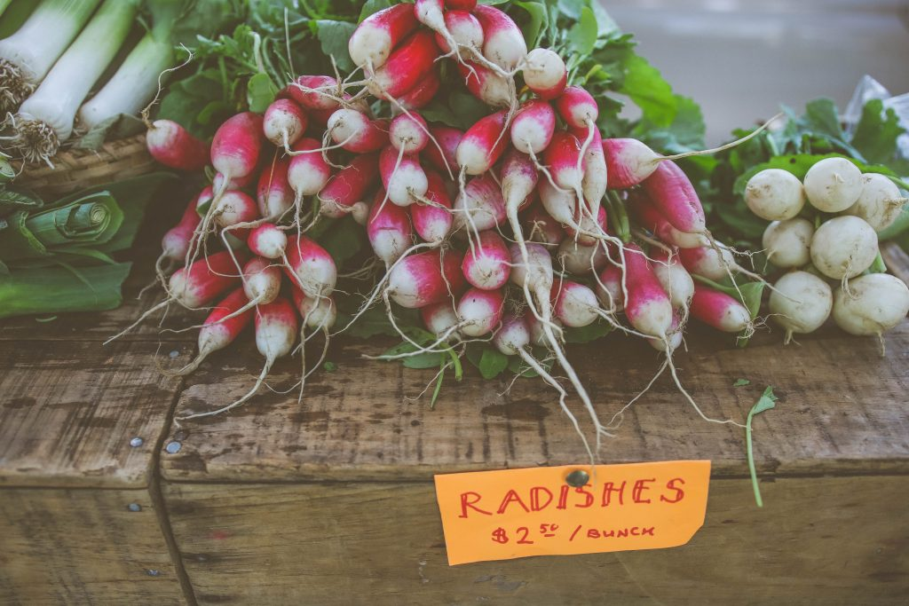 Guide to Growing Your Own Radishes